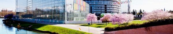 Next month, the largest event organised by the European Parliament will be held in Strasbourg.