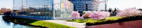 Das Europäische Parlament hat seine Verpflichtung zur Nachhaltigkeit bekräftigt,